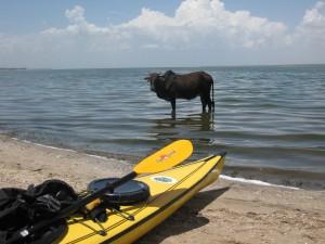 Kayak Tanzania Africa