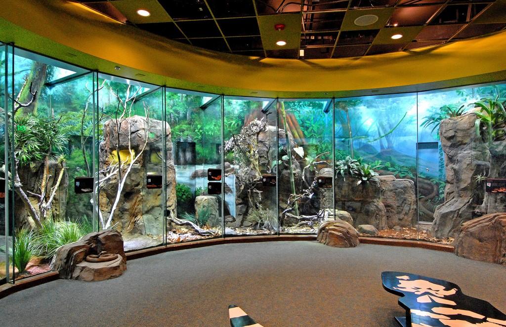 Living Amphibians Invertebrates Reptiles (LAIR) Exhibit