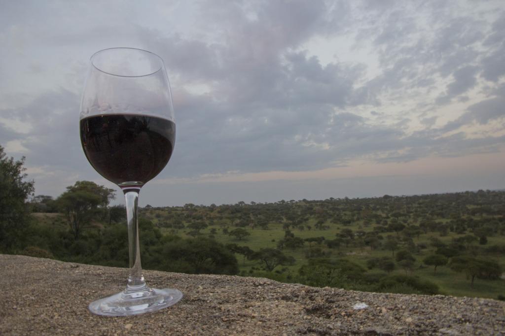 Enjoying wine while overlooking Tarangire National Park- Stunning