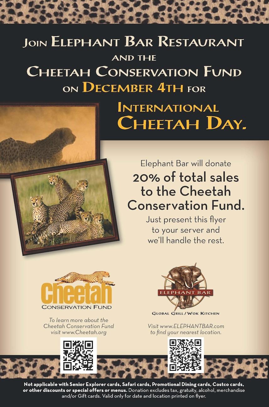 CCF EB International Cheetah Day Flyer
