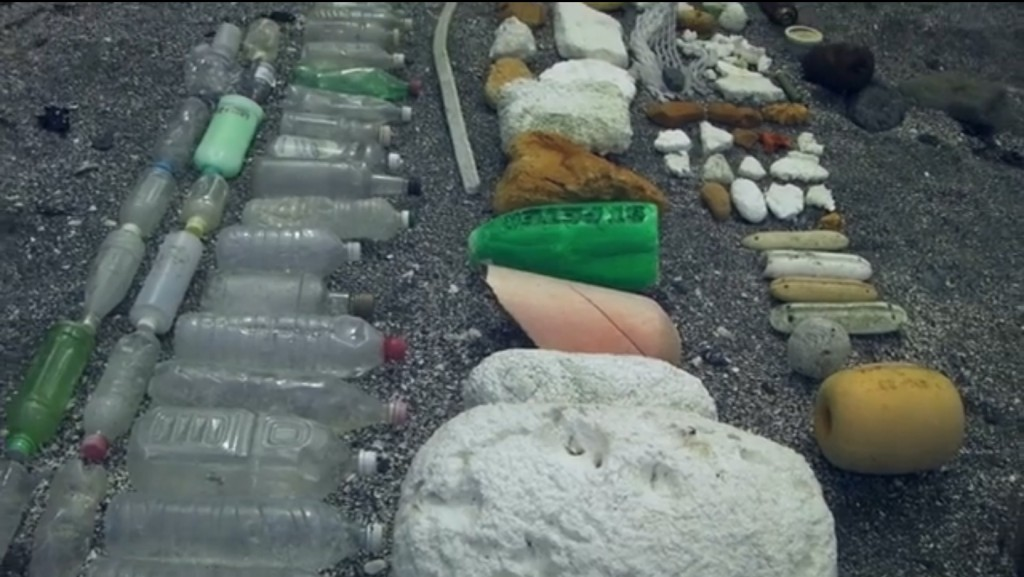 Some of the Garbage Found Along the Coastline on Washington's Roadless Coast