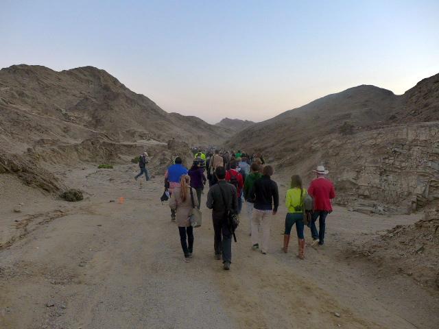 Into the Desert for Dinner