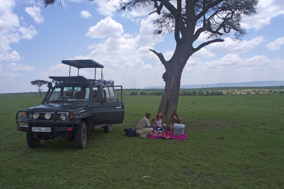 Picnicking In The Serengeti