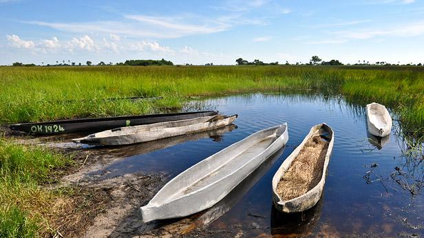 Mokoro dugout canoes in Botswana